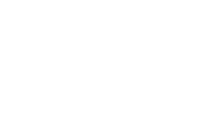LCN Logo white